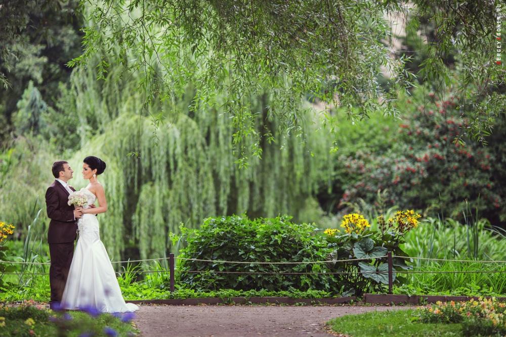 также будут ботанический сад фото молодоженов самых простых